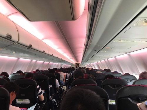 JAL伊丹-成田便の機内の様子