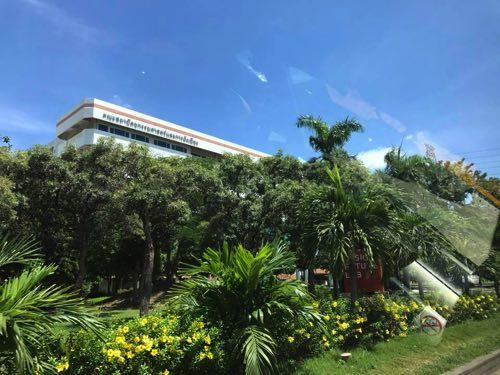 ジャングルに囲まれているように見えるタマサート大学ランシットキャンパス