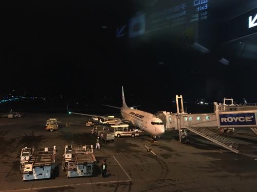 お疲れ様。JALで中部国際空港から新千歳まで連れて行ってくれたJAL便