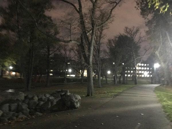 北海道大学の札幌キャンパスの様子