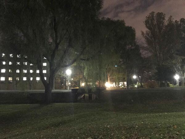 北海道大学札幌キャンパスの様子