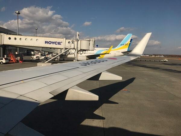 JAL3106便のウィングレット
