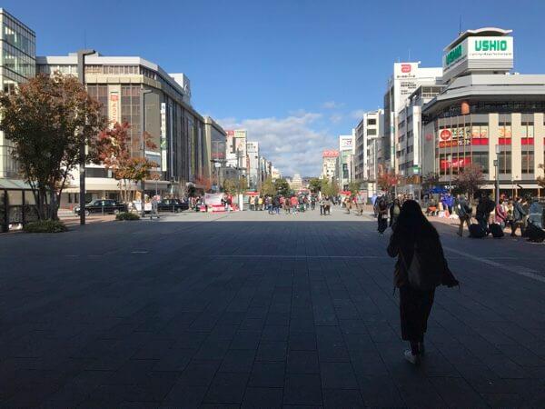 姫路駅から見える姫路城